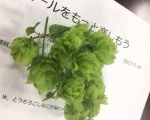 hop-0714
