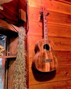 0329-ukulele